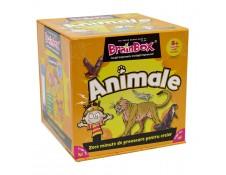 Brainbox: Animale